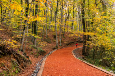 Istanbul's Most Popular Biking Trails